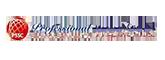 professional security logo